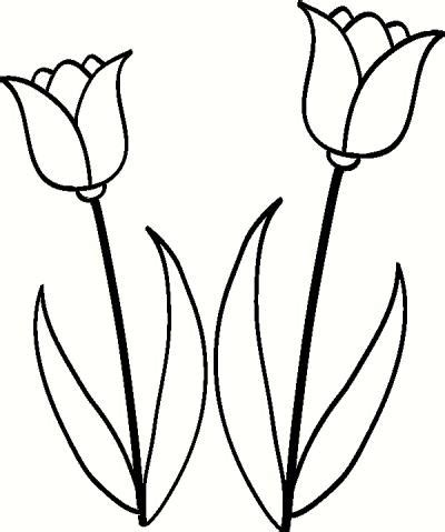 tulip clipart black and white tulip line drawing clipart best