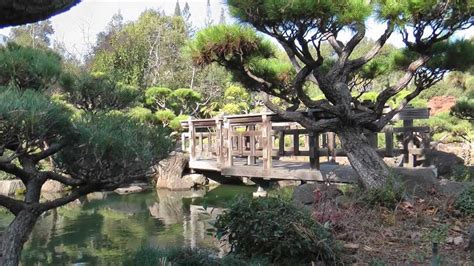 japanese gardens in hayward ca