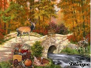 Kostenlose Bilder Herbst : herbst laub bild 100436940 ~ Yasmunasinghe.com Haus und Dekorationen