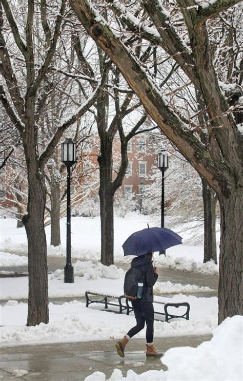 walker winter sentinelsource way surrounded keene equipped pedestrian appian umbrella coating thursday along makes morning fresh