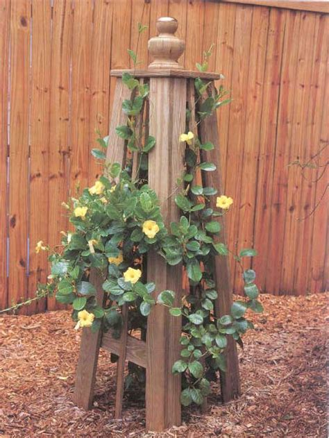 vine trellis outdoor wood plans
