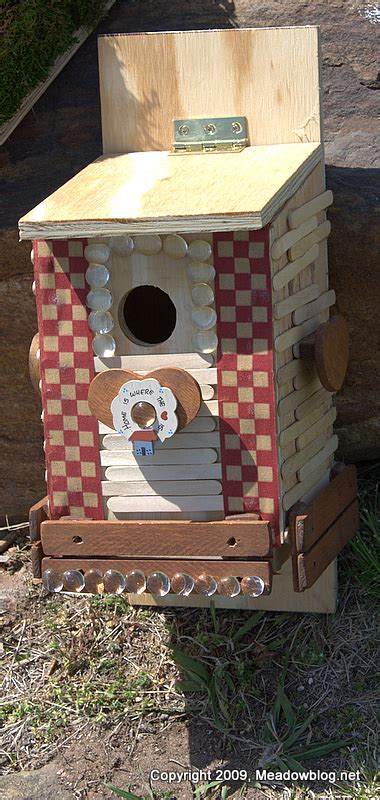 tree swallow nest box project  meadowlands nature blog