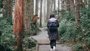 Download, Wallpaper, 1920x1080, Girl, Loneliness, Alone, Path, Forest, Full, Hd, Hdtv, Fhd, 1080p, Hd