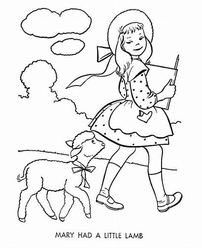 Coloring Lamb Pages Nursery Mary Had Rhymes