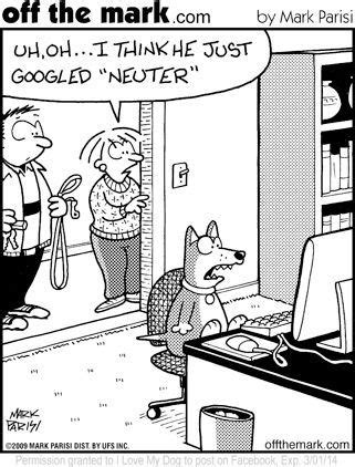 spay neuter  pets reducing pet