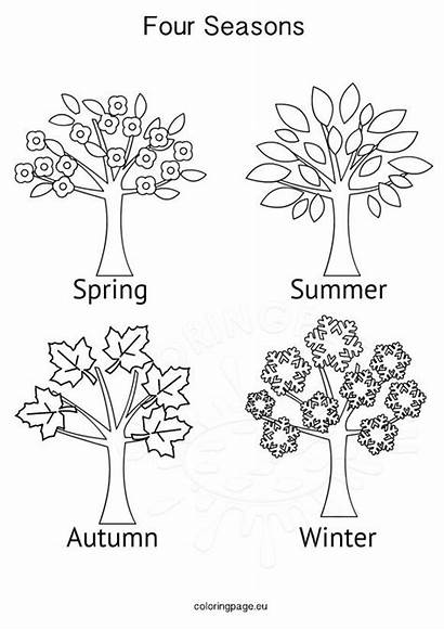 Seasons Four Activities Coloring Tree Pages Winter