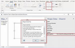 Multi-line Text In Visio Shape Data