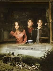 Harry Potter and the Prisoner of Azkaban - Prisoner of ...
