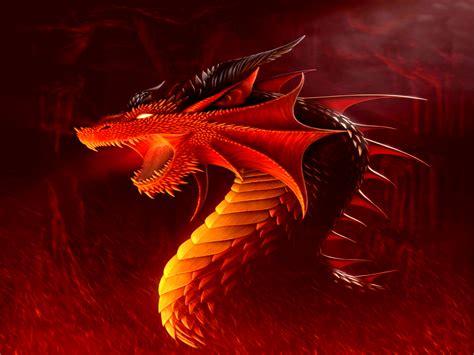 dragon hd wallpapers desktop backgroundshigh quality
