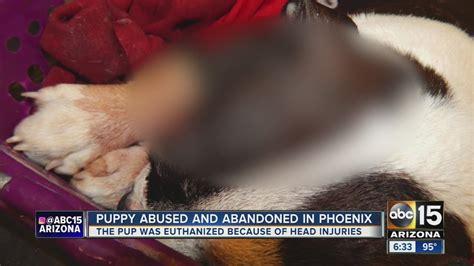 euthanized dog being abused abandoned