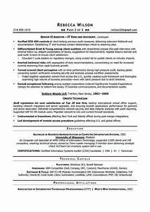auditor resume sample best professional resumes letters With auditor resume