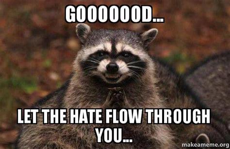 Let The Hate Flow Through You Meme - gooooood let the hate flow through you evil plotting raccoon make a meme