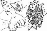 Fish Coloring Pages Rainbow Adult Adults Realistic Detailed Printable Fishes Colouring Educative Getcolorings Koi Pioneering Getdrawings Colorings sketch template