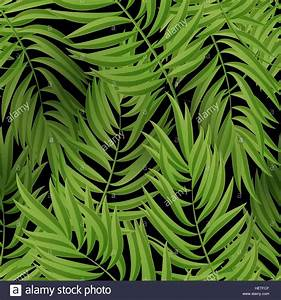 Tropical Palm leaves. Vector seamless. Tropical Palm ...