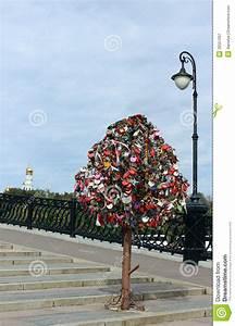 Baum Der Liebe : baum der liebe luzhkov br cke moskau russland lizenzfreie stockfotografie bild 26557097 ~ Eleganceandgraceweddings.com Haus und Dekorationen