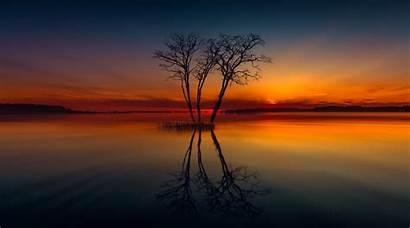 4k Lake Sunset Tree Reflection Nature Horizon