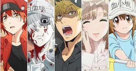 hataraku saibou episode   english   anime