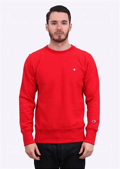 Sweater Reverse Weave Champion Crew Triads