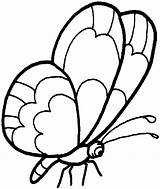 Butterfly Coloring Preschool Pages sketch template