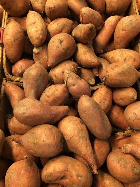 Fall for Sweet Potatoes in November - BRG Health • Bonnie ...