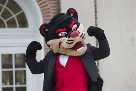 uc celebrates  years  bearcats  oct   home