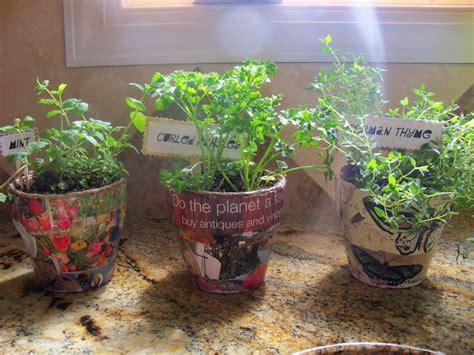 clever dollar tree garden pot decorating ideas debbiedoos