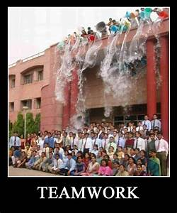 It39s All About Teamwork 20 PICTURES