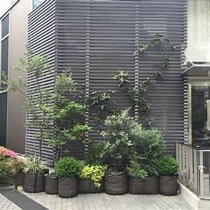 petite jungle de pots en geotextile 50l et de petit With habillage mur interieur bois