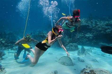 key west snorkeling snuba scuba diving excursions training by padi