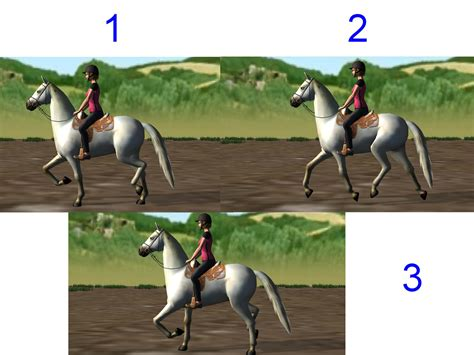 How To Ride A Horse At Walk Trot And Canter 3 Steps