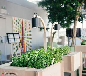 Mini Potager D Intérieur : agriculture urbaine potagers d int rieur de bureau et ~ Dailycaller-alerts.com Idées de Décoration