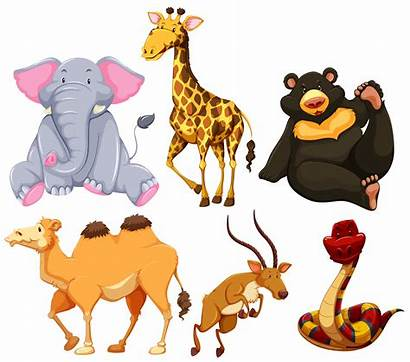 Animals Different Types Wild Six Vector Camels