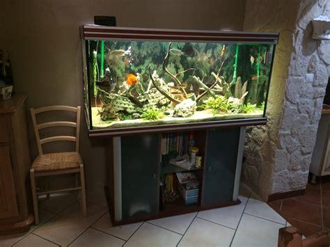 petites annonces de cuve nue d aquarium