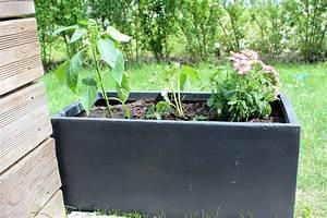 Blumenkübel Bepflanzen Vorschläge : so geht s blumenk bel richtig bepflanzen sponsored mama und die matschhose ~ Frokenaadalensverden.com Haus und Dekorationen