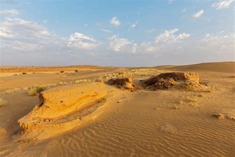 thar desert unique facts about the fascinating thar desert