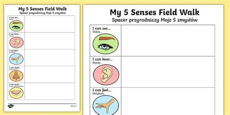 five senses field walk worksheet activity sheet