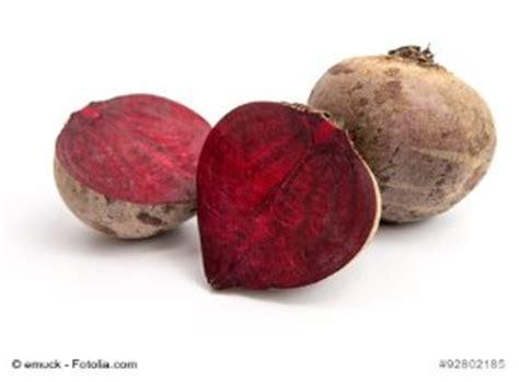 rote beete aussaat rote beete anbauen aussaat pflege und ernte