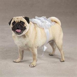 View pet wedding clothes aria ring bearer pillows for for Dog wedding ring bearer pillow