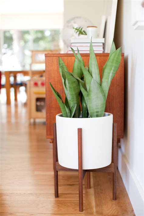 giveaway mid century modern planter with modernica this little street this little street