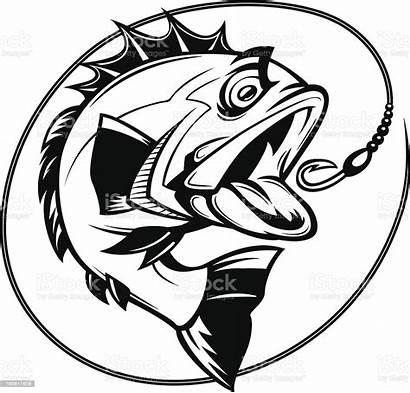 Bass Fishing Graphic Istock