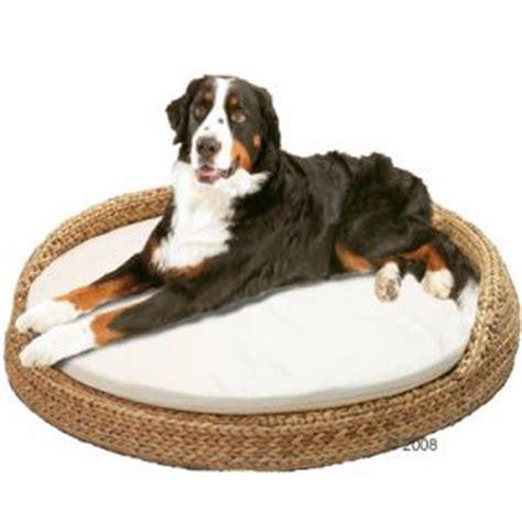 camas  perros modernas  baratas mil ideas de