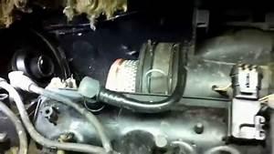 Marder Im Auto : marder im auto macht ein nest im luftfilter z ndkabel durch gebissen youtube ~ Yasmunasinghe.com Haus und Dekorationen