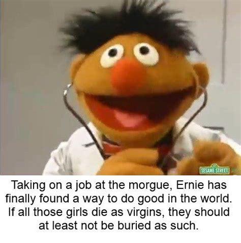 Ernie Meme - 7 best sesa memes images on pinterest