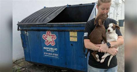sick bonded puppies thrown   san antonio dumpster