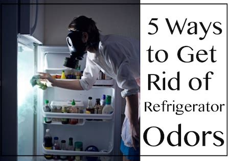 how to get rid of bad odours in the house image gallery stinky refrigerator