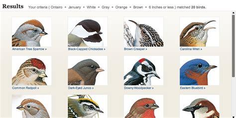 National Geographic's Backyard Bird Identifier. ...