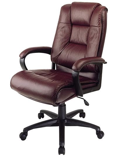 executive leather office chair vs mesh office chair