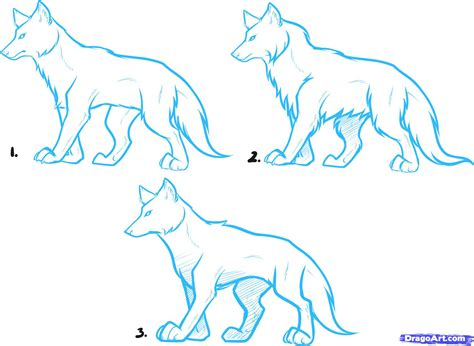 draw anime wolves anime wolves step  step drawing