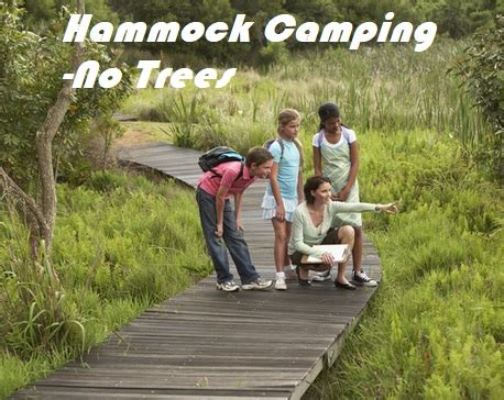 hanging  hammock  trees  camping sleeping