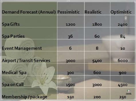 mobil project spa project finance analysis of mobile spa project